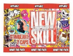 WTFLABZ - New Skill (1 порция) пробник